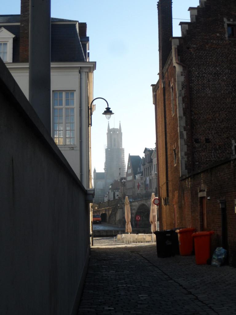 Sint-Baafskathedraal - zicht vanaf Hof van Fiennes