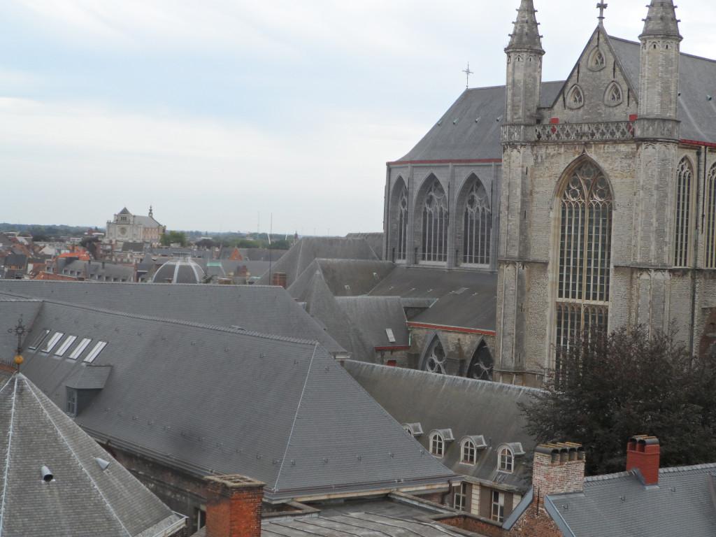 Torenzicht op Sint-Baafskathedraal - links Sint-Annakerk