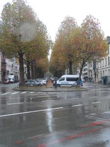 Parklaan - Herfst