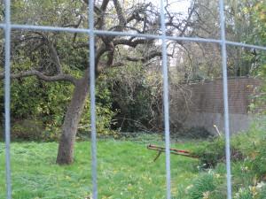 Tuinafsluiting en muur waarachter torentje verborgen is