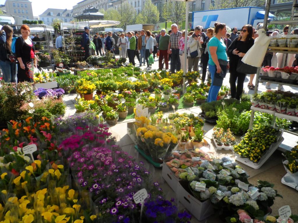 Kouter - Bloemenmarkt