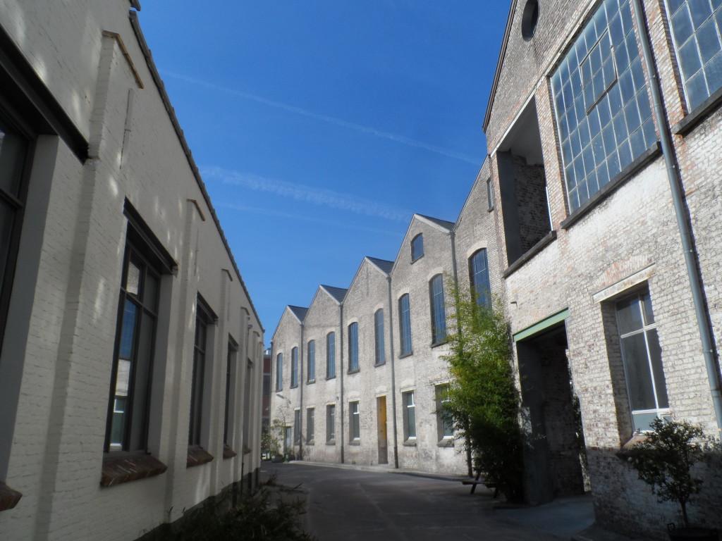 Molenaarsstraat - achterkant Opgeëistenlaan