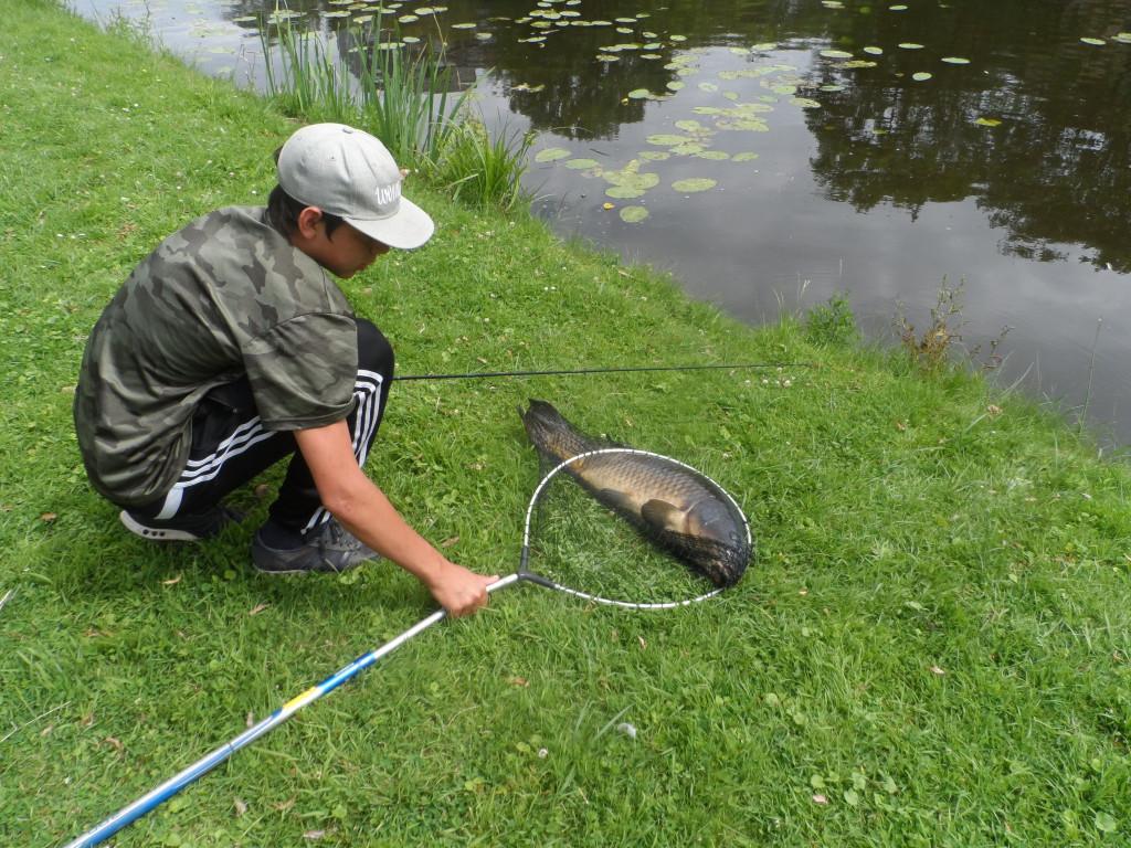 Meierij, Ledeberg – Jongeling vist karper van ca. 10 kg uit de visvijver. Hij is Duitser en verpoost hier met zijn vader op bezoek bij Gentse vrienden. De vis woog zo zwaar dat de steel van zijn schepnet brak.