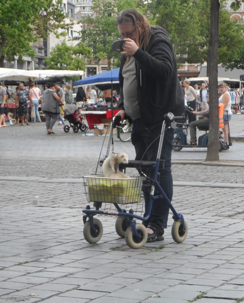 Vrijdagmarkt – Opgemerkt tijdens de rommelmarkt: met fret op stap in een caddy