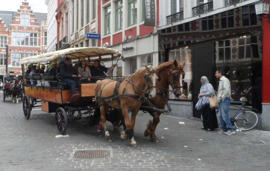 Hooiaard – Grasbrug – Paard- en koetskaravaan als toeristenvehikel.