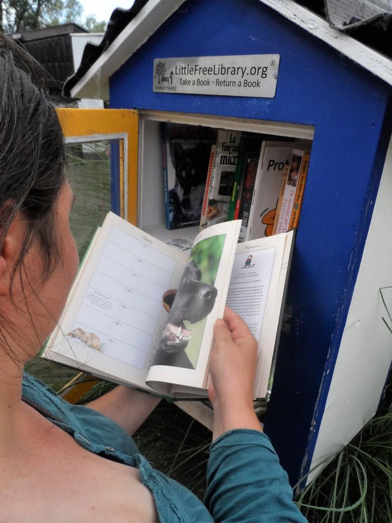 Mahatma Gandhistraat , Boerse Poort – Ieder die het wenst, kan participeren in het concept van LittleFreeLibrary.org: ontleen een boek en stop er een ander in de plaats – een initiatief uit de VS, dat ook in de Boerse Poort ingang vond. Merkwaardig.
