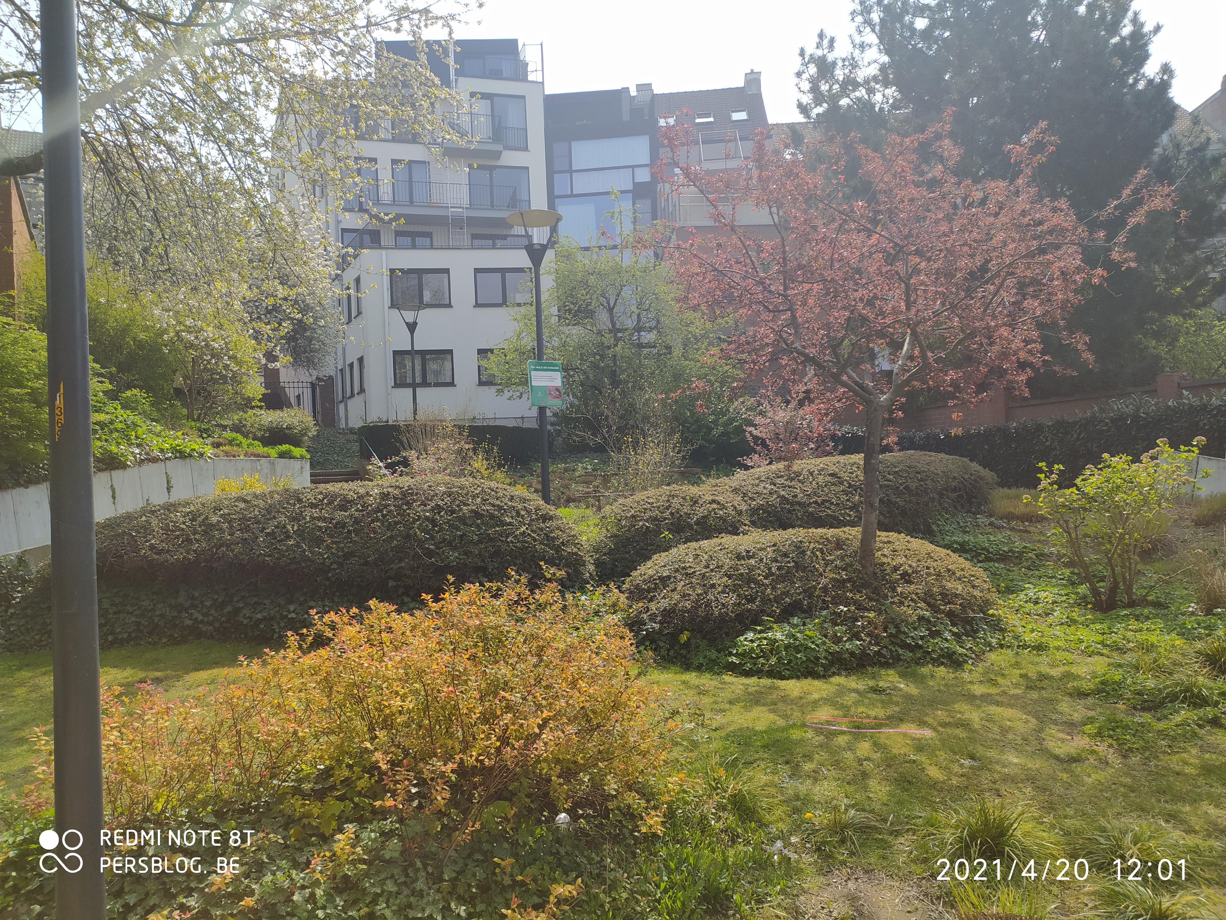 22 Veergrep - zijstraat Kortrijksepoortstraat - publieke buurtuin - Leie IMG_20210420_120442 (5)