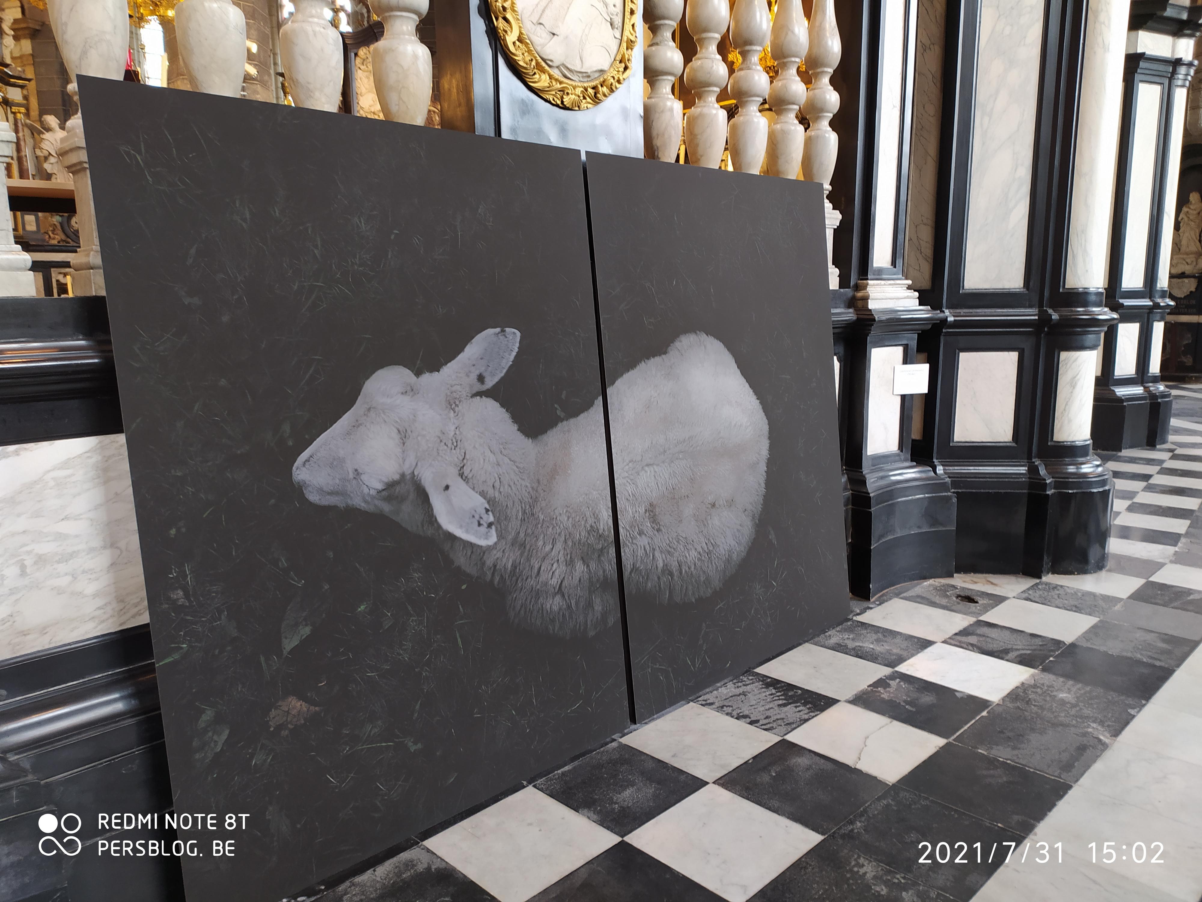 3 Bij Sint-Jacobs - Sint-Jacobskerk - kunstexpositie (2)